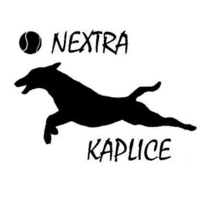 NEXTRA