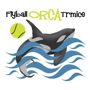 FLYBALL ORCA